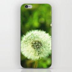 Blow me iPhone & iPod Skin