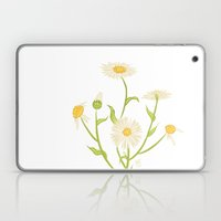 Erigeron Daisies Laptop & iPad Skin