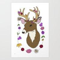 Spring Deer Art Print