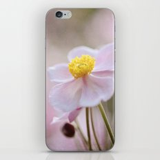 Beautiful dream iPhone & iPod Skin