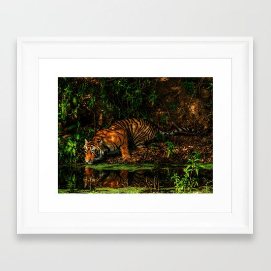 The Royal Bengal Tiger ( Framed Art Print