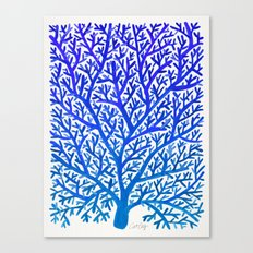 Fan Coral – Blue Ombré Canvas Print