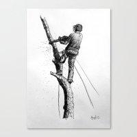 Arborist Tree Surgeon Using Stihl Chainsaw o20T  Canvas Print