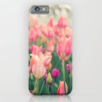 Tulips At Cheekwood iPhone 6 Slim Case