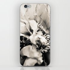 Big Bang Theory iPhone & iPod Skin