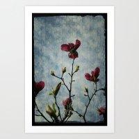 Magnolia Red Art Print