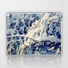 Amazing Winter Laptop & iPad Skin