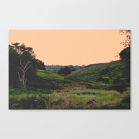 Sunset at the Hills Canvas Print