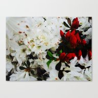 Rudolph Red Flowers Canvas Print