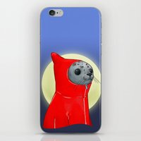 Hooded Seal iPhone & iPod Skin