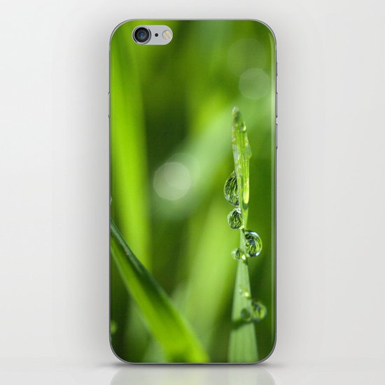 Morning dew 8548 iPhone & iPod Skin