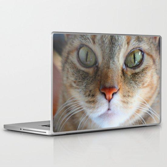 Livingstone Laptop & iPad Skin