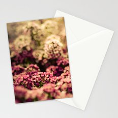 Serendipitous Moment Stationery Cards