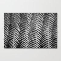 Plant Leaf BW Canvas Print