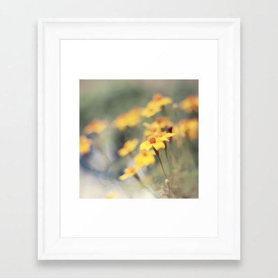 Orange zest Framed Art Print