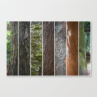 Mix arboreo Canvas Print