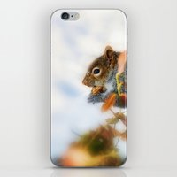 Hunting For Food  iPhone & iPod Skin