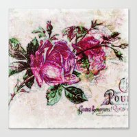 Poster Rose2 Canvas Print