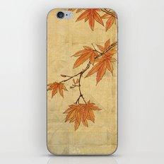 Asiafoldantique iPhone & iPod Skin