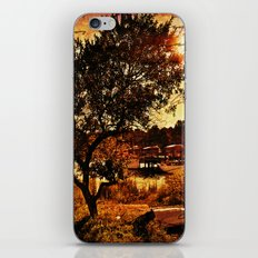 By the Sea, Mr Todd iPhone & iPod Skin