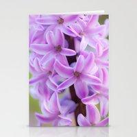 Hyacinthus orientalis 645 Stationery Cards