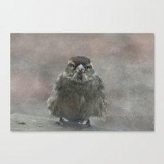 On A Cold Winters Day Canvas Print