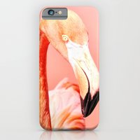 iPhone & iPod Case featuring Pink Paradise by Lisa Argyropoulos