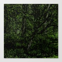 Green Season Canvas Print