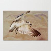 Seagull Swirl Canvas Print