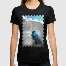 BLUE BIRD Womens Fitted Tee Tri-Black SMALL