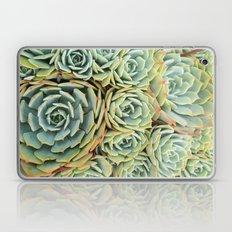 Succulentville Laptop & iPad Skin