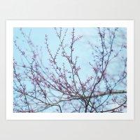 Spring Air Art Print
