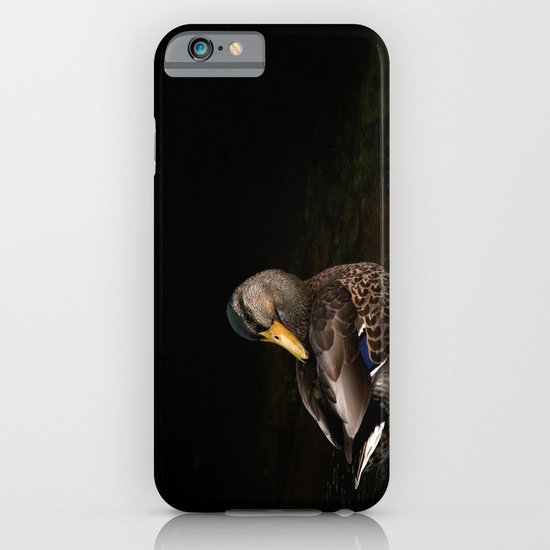 Summers Mallard iPhone & iPod Case