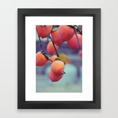 Persimmons in the Rain Framed Art Print