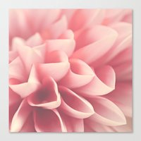 Look Closely Canvas Print