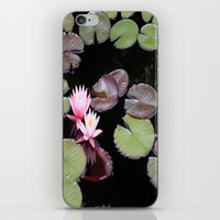 Lily Pad Flowers iPhone & iPod Skin