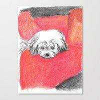 Canvas Print featuring Holly by Tara Bateman