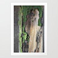 Green Peel Art Print