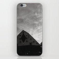 Carnival iPhone & iPod Skin
