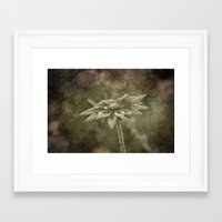 Vintage Flower Framed Art Print