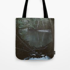 Drabby Swampy Creek Tote Bag