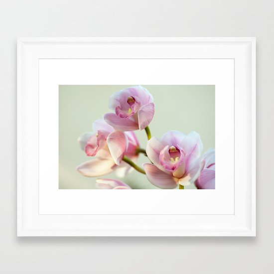 Cymbidium orchid 9770 Framed Art Print