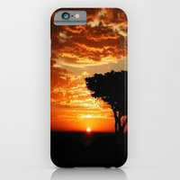 iPhone Cases featuring Fiery Dragon  by Chris' Landscape Images of Australia