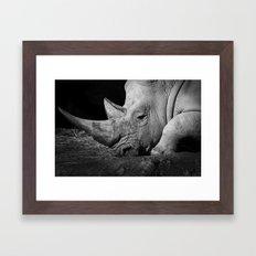 Rhino II Framed Art Print
