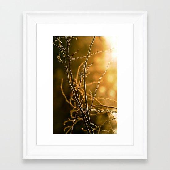 Amber Frost Framed Art Print