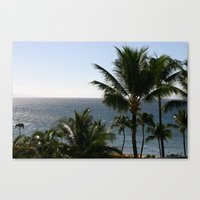View From Maui Canvas Print