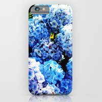 iPhone & iPod Case featuring  Blue flowers all summer  by seb mcnulty