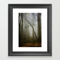 Misty Woods Framed Art Print