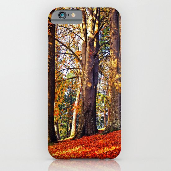 Autumn troika iPhone & iPod Case