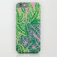Zebra Plant  iPhone 6 Slim Case